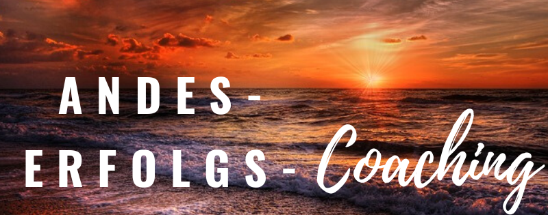 Andes Erfolgs-Coaching